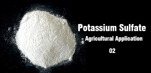 Potassium Sulfate Application (02)