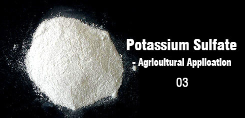 The role of potassium sulfate