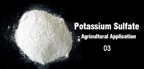 The role of potassium sulfate