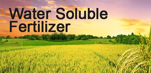 Adventure of Water Soluble Fertilizer