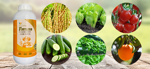 Water soluble fertilizer containing amino acid (trace element type)